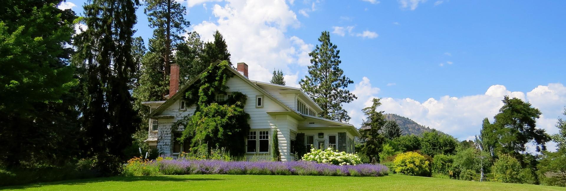 Five Tips for the Best Garden Ever! - Garden